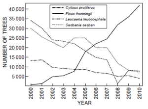 Trends in number of surviving trees (locally planted Vs Introduced by agroforestry)