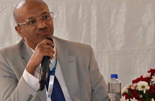 EthiopianMinisterOfEnvironmentAtUNEA-2_Cropped
